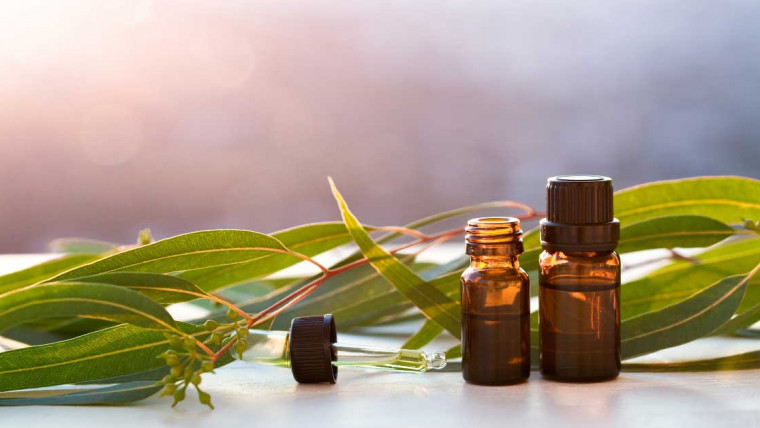 ulje eukaliptusa za lice